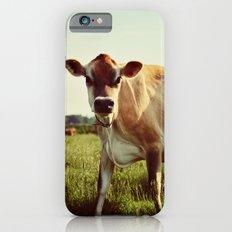 jersey cow iPhone 6 Slim Case