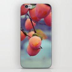 Persimmons in the Rain iPhone & iPod Skin