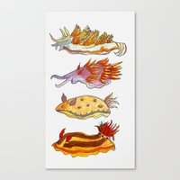 Sea Slug Canvas Print