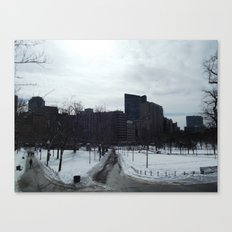 Boston Common Canvas Print