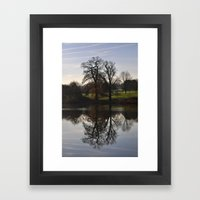 Trees in the water Framed Art Print