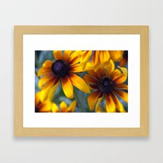 Summer's things - rudbeckia 20 Framed Art Print