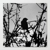 Silhouette Bird.  Canvas Print
