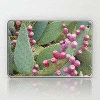 Desert Fruit Laptop & iPad Skin