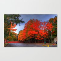 Falling for Red Canvas Print