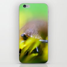 slug life iPhone & iPod Skin