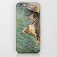 iPhone & iPod Case featuring Seagull Flutter by Deborah Benoit