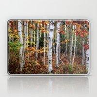 Acadia Fall Color Laptop & iPad Skin