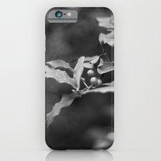 Honeysuckle Berries in Black and White iPhone 6 Slim Case