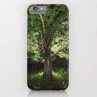 Branching into Illumination iPhone 6 Slim Case