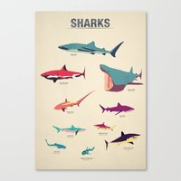 Sharks Canvas Print