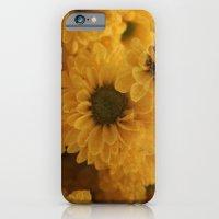 Ox Eye iPhone 6 Slim Case