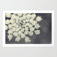 flower Art Prints featuring Black and White Queen Annes Lace by Erin Johnson