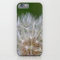 Dandelion iPhone 6 Slim Case