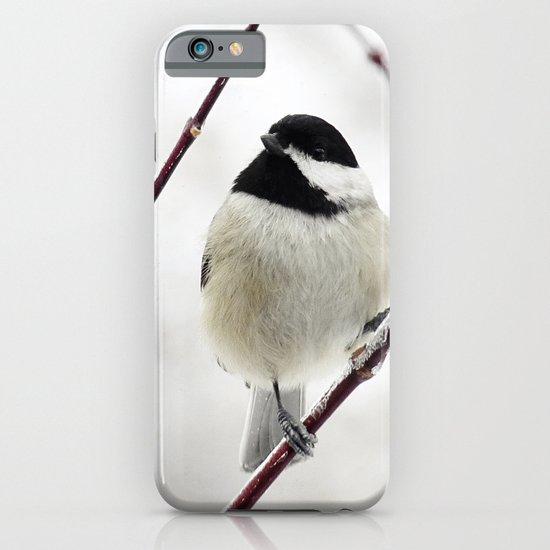 Chicka Chickadee iPhone & iPod Case