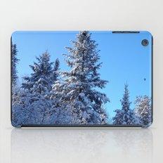 Breathtaking iPad Case