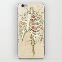The Core iPhone & iPod Skin