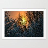 The Sun Shines Forth Art Print