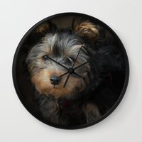 Yorkshire Terrier Puppy Portrait Wall Clock