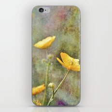 Buttercup Delight iPhone & iPod Skin