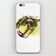 Skull 3 iPhone & iPod Skin