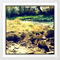 Nature 6 Art Print