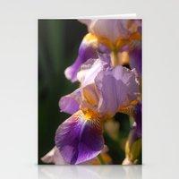 Iris Stationery Cards