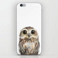 Little Owl iPhone & iPod Skin