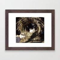 Baby O Framed Art Print