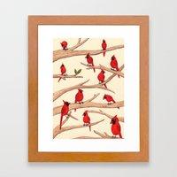 Cardinals Framed Art Print