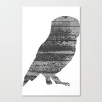 Owl (The Living Things Series) Canvas Print