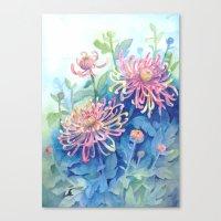 Chrisanthemum Canvas Print