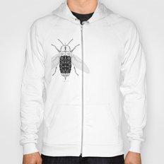 entomology 03. (iii) Hoody