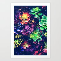 Colorful Plants  Art Print