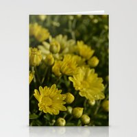 Yellow Mums Stationery Cards