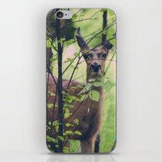 Peeking iPhone & iPod Skin