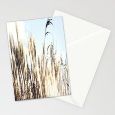 sun setting on reeds Stationery Cards