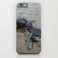 iPhone & iPod Case featuring baby sea turtle kisses by Katie Pelon