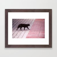 Cat Walking  6589 Framed Art Print