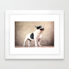 Frech bulldog Framed Art Print