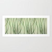 Grass Panneau Art Print