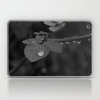 Tear Drop Black & White  Laptop & iPad Skin