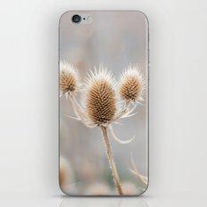 Thistles iPhone & iPod Skin