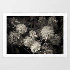 Garden Scene no.1 2010  Art Print