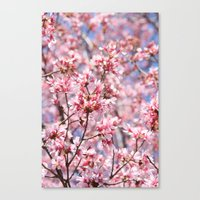 Cherry Blossom Blooms Fo… Canvas Print