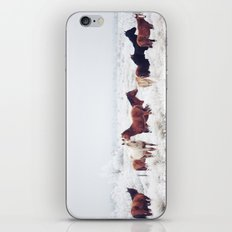 Winter Horseland iPhone & iPod Skin