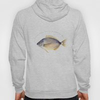 Stop the plastic pollution of oceans and seas! Hoody