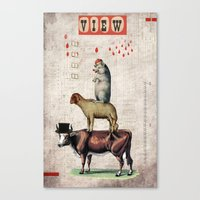 Animal Collection -- Tog… Canvas Print