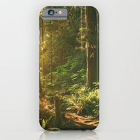iPhone & iPod Case featuring Forest Sunset by Kevin N. Murphy Photography