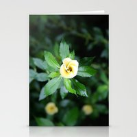 Open up Stationery Cards